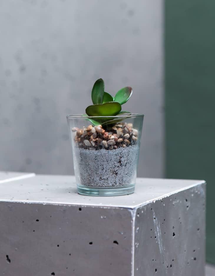 Round leaf plant pot