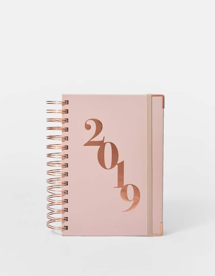Pink 2019 diary